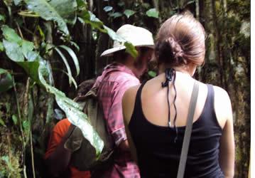 La randonnée vous mènera à travers les plantations de cacao et de la forêt tropicale